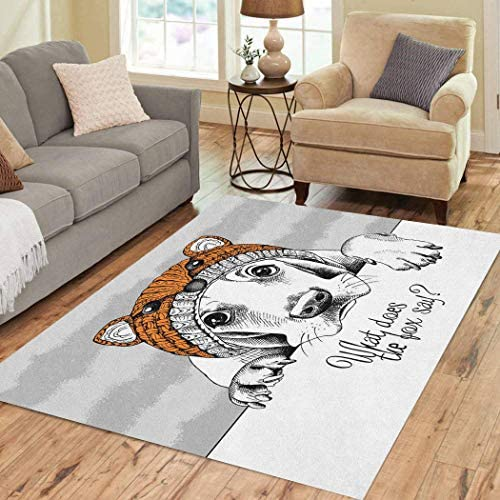 Vooft Area Rugs 3'x5' Dog Basset Hound Fox Muzzle Hat Gray Soft Flannelette Fluffy Stain Resistant Non-Slip Carpet Elegant Floor Decor Bedroom Living Room
