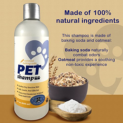 Mountainview Pet Products Oatmeal Shampoo for dogs and cats. Great for Itchy Smelly Dogs, No Chemicals; All Natural Ingredients Size: 17 oz (500 ml)