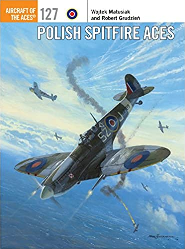 Polish Spitfire Aces: Wojtek Matusiak, Robert Grudzien