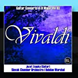 Vivaldi: Guitar Concerto in D Major RV 93