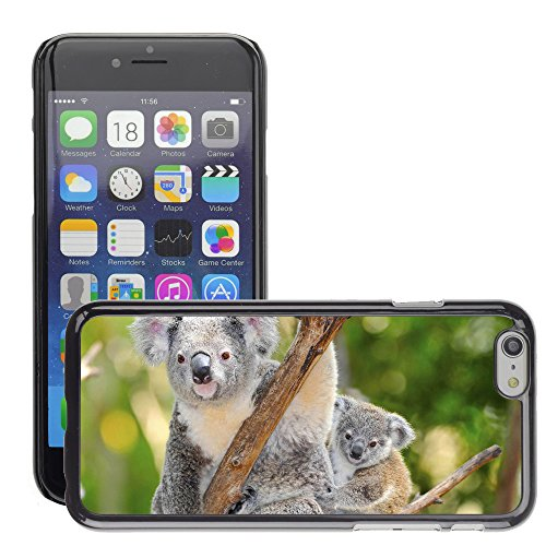 "Premio Sottile Slim Cassa Custodia Case Cover Shell // V00002817 koala australien // Apple iPhone 6 6S 6G PLUS 5.5"""