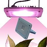 Lenofocus LED Grow Light Panel 24W DC12V 5-bands Full Spectrum Plant Lamp Flood Lighting for Indoor Plants Veg and Flowering