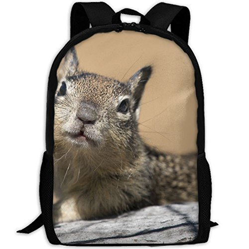 California Ground Squirrel Adult Travel Backpack School Casual Daypack Oxford Outdoor Laptop Bag College Computer Shoulder Bags