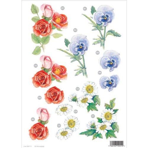Daisy D Scrapbook Paper (3d Die-Cut Decoupage Sheet 8.3