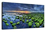 Cheap Canvas Wall Art Beach Sunset Mossy Rocks Iceland Nature Pictures Modern Canvas Artwork Large Canvas Painting Prints Long Contemporary Wall Art Landscape for Office Decor Home Decoration 20 x 40 Inches