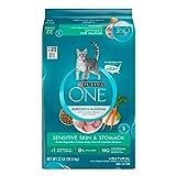Purina ONE Sensitive Skin & Stomach Formula Adult Dry Cat Food - 22 lb. Bag