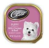 Cesar Canine Cuisine Puppy with Chicken and Beef In Meaty Juices for Small Dogs, 3.5-Ounce Trays  (Pack of 24), My Pet Supplies