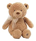 Gund Baby Animated Stuffed Teddy Bear, Caring Cub Review and Comparison