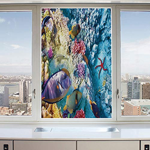 (3D Decorative Privacy Window Films,Exotic Coral Reefs Fish School Starfish Shallow Clean Lagoon Egyptian Red Sea Image,No-Glue Self Static Cling Glass film for Home Bedroom Bathroom Kitchen Office 17.)