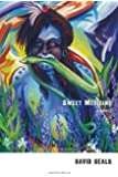Sweet Medicine: A Novel