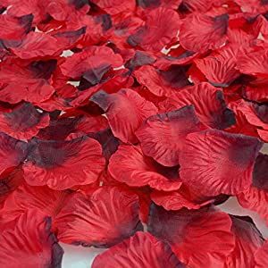 obmwang 3000Pcs Dark Silk Rose Petals Wedding Flower Decoration Artificial Red Rose Flower Petals for Wedding Party Favors Decoration and Vase Home Decor Wedding Bridal Decoration(3000pcs Red) 2