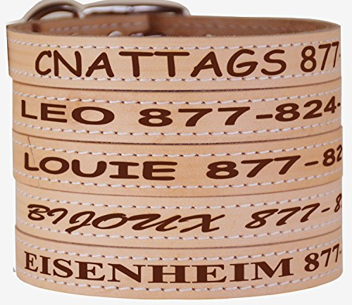Leather Pet Collars - Personalized Collars For Dogs and Cats, Multiple Sizes and Colors, Premium authentic Leather Made in USA (Large, Tan)