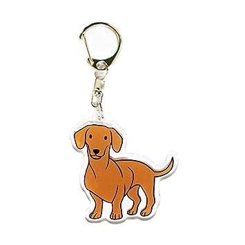 Amazon.com: Dachshund encanto, Wiener Perro amante llavero ...