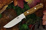 Bark River Gameskeeper II Fixed Blade Knife, Bocote Wood For Sale