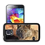 Liili Premium Samsung Galaxy S5 Aluminum Snap Case Lonely gray wolf in beams of the coming sun IMAGE ID 9630712