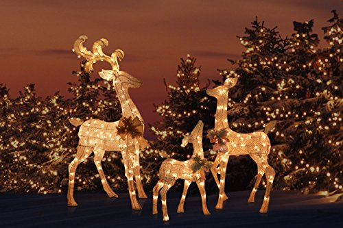 Outdoor Lighted Christmas Lawn Decorations - 4