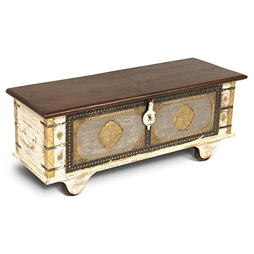 Steve Silver Zahra Storage Trunk Coffee Table