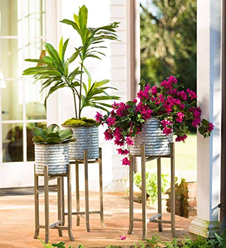 - Plow & Hearth Galvanized Metal Bucket Planters on Wood Stands, Set of 3 - Large Bucket 13 Dia x 12 H; Stand 35.25 H