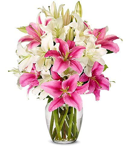 Amazon Com Flowers Stunning Pink And White Lilies Free Vase