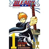 Bleach 48 (Chinese Edition)