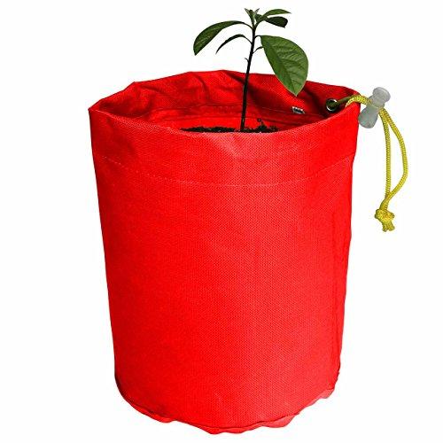 avoseedo-grow-your-own-avocado-avocado-grow-bag-5-gallon-red