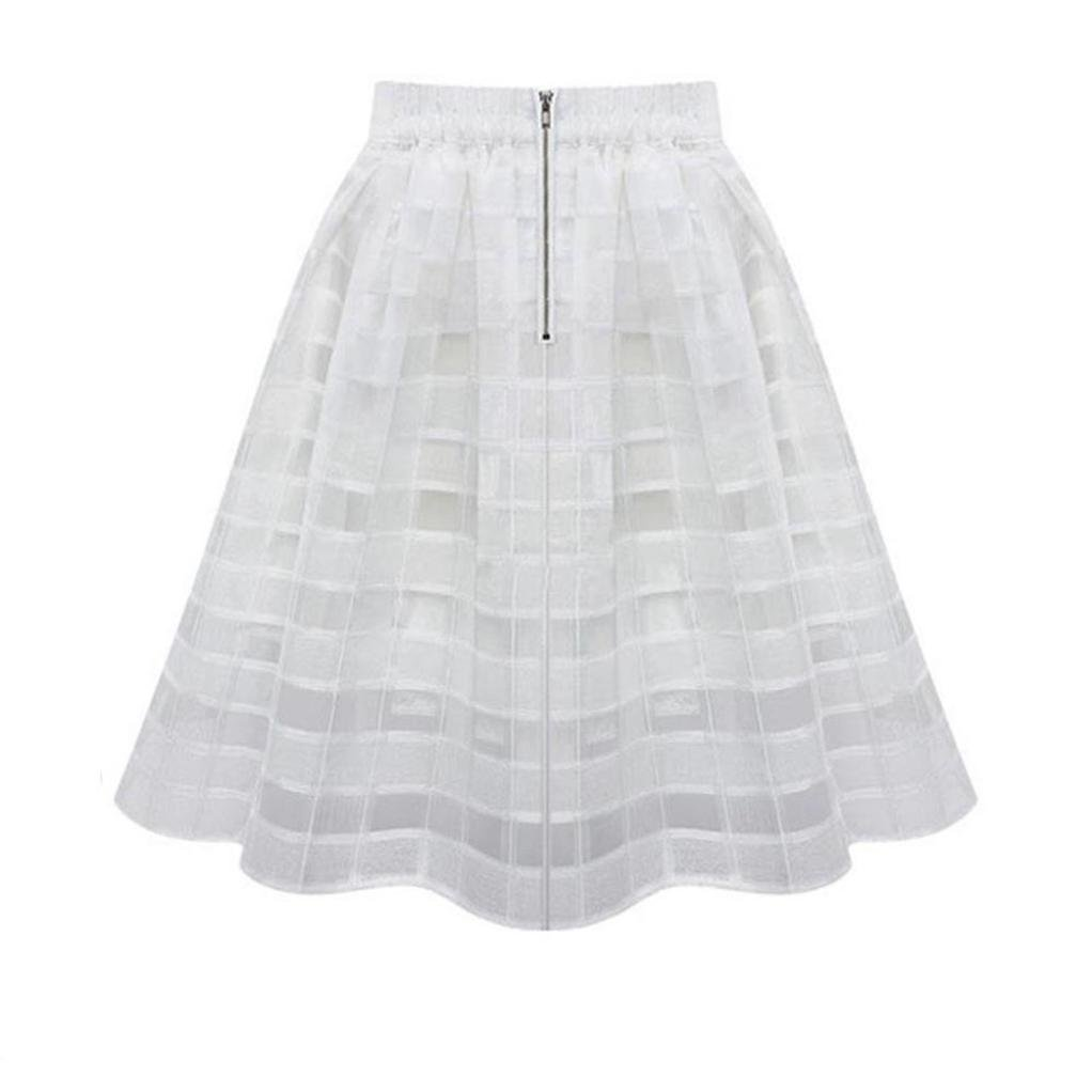 Women Fashion Skirts Elastic High Waist Zipper BCDshop Tulle Skirt 2 Layers Dress (White, L)