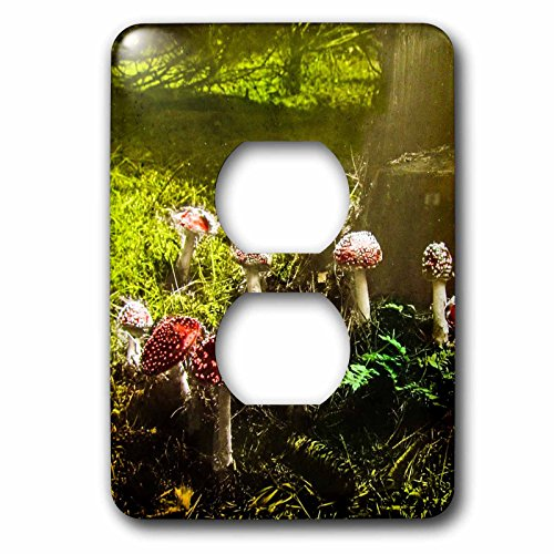 (3D Rose LSP_246047_6 Vintage Fantastic Funky Fungus Mushrooms in The Forest 1890s 2 Plug Outlet Cover)