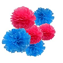 HEARTFEEL 6pcs Tissue Paper Pom Poms Flower Ball Hanging Pom for Wedding Party Outdoor Decoration Bridal Shower Party Baby Shower (Turquoise and Fuchsia)