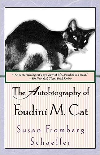 NEW FRIENDSHIP Cats Kittens Drinking Milk Plate Friendship Greeting Card