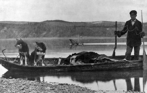 (Trapper in Canoe with Hides and Dogs Alaska Photograph (12x18 Art Print, Wall Decor Travel Poster))