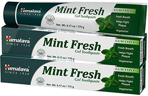 Himalaya Mint Fresh Gel Toothapste (2 Pack)