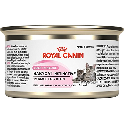 Royal Canin Canned Cat Food,mother and kittens Babycat Formula1st stage loaf in sauce (Pack of 24 3-Ounce Cans)