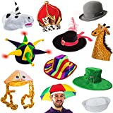 6 Assorted Dress Up Costume Party Hats By Funny Adult