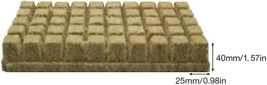 Steinwolle Anzuchtmatte Tray Hydroponic Grow Rockwool Cubes Soilless Anbau Compress Base 1//25//50er Anzuchtmatte Grodan Steinwollmatte Stecklingsblock Stecktray Rockwool//Stonewool Grow Cubes