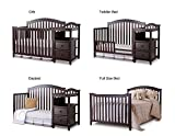 Sorelle Berkley 4 in 1 Crib and Changer, Espresso