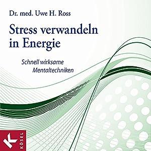 Stress verwandeln in Energie Hörbuch