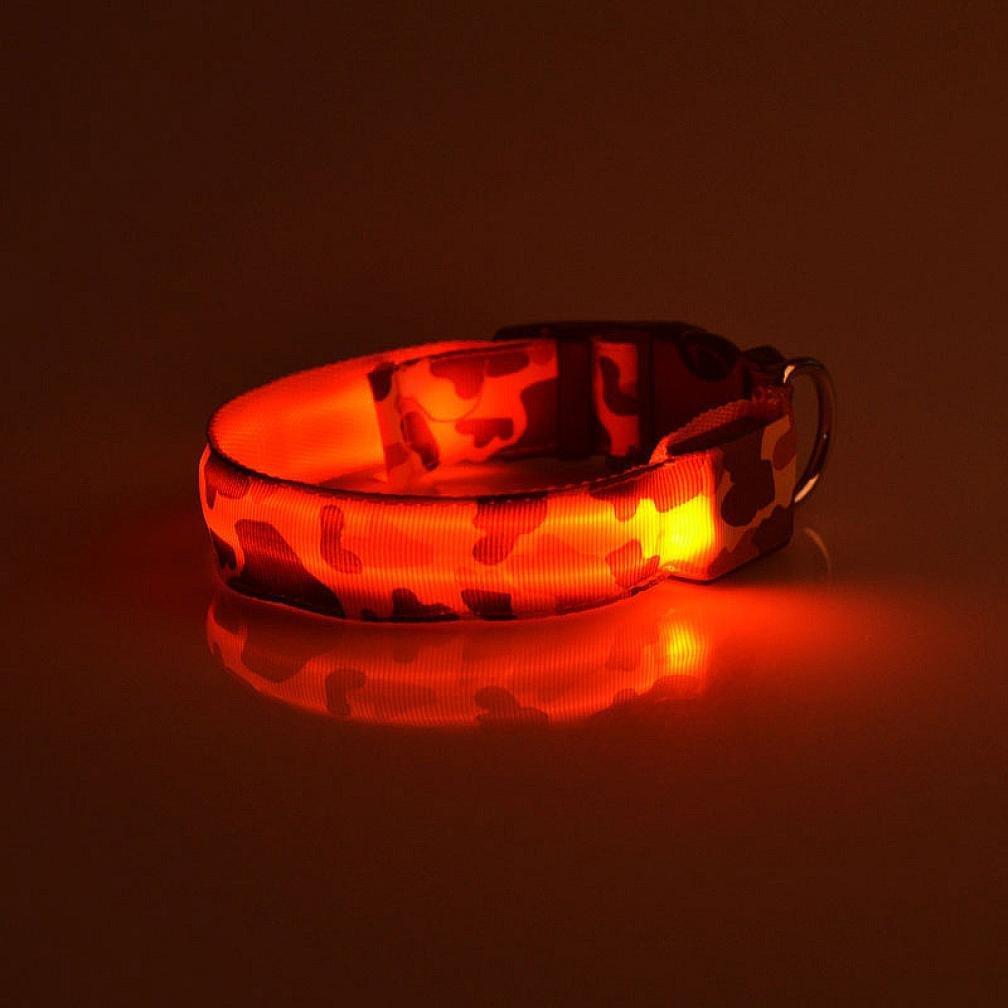 ペット襟、ieasonホットセール。ペット犬LEDライトフラッシュ夜安全防水首輪調節可能 L ブラック IEason B075MZ4ZV8  レッド L