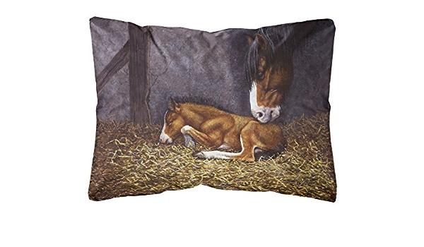 Amazon Com Caroline S Treasures Bdba0207pw1216 Horse And Her Foal Fabric Decorative Pillow 12h X16w Multicolor Garden Outdoor