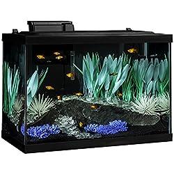 Tetra ColorFusion Aquarium 20 Gallon Fish Tank Kit, Includes LED Lighting and Decor