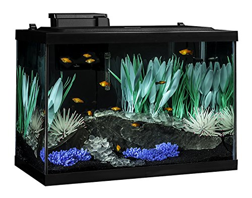 Tetra ColorFusion Aquarium 20 Gallon Fish Tank Kit, Includes LED Lighting and Decor by Tetra