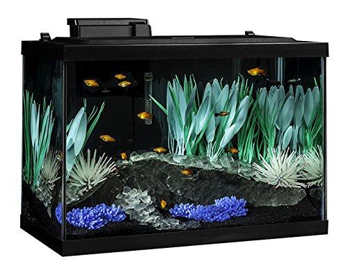 Tetra Color Fusion aquarium kit