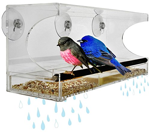 Large Premium Window Bird Feeder, Sliding Drawer Seed/Water Tray With Drain Holes & Rubber Covered METAL Perch. Includes All Weather Suction Cups For Easy Install. LIFE TIME WARRANTY. IN GIFT BOX