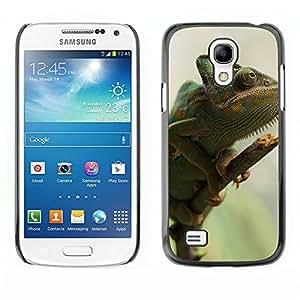 Hot Style Cell Phone PC Hard Case Cover // M00115976 Yemen Chameleon Chamaeleo Calyptratus // Samsung Galaxy S4 Mini i9190