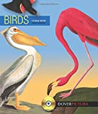 Birds (Dover Pictura Electronic Clip Art)
