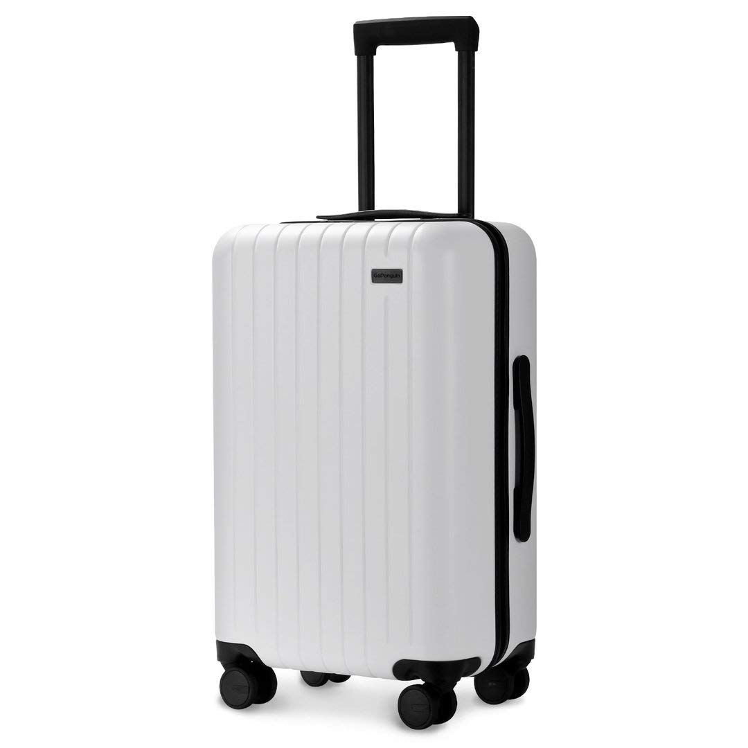 Best Luggage 2020.Best Lightweight Luggage For Europe 2020 Frank S Fav