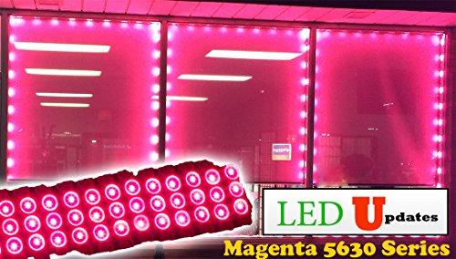Light Magenta Package (20ft Storefront super bright Magenta hot pink LED Light module 5630 with UL 12v 3 Amps AC Power)
