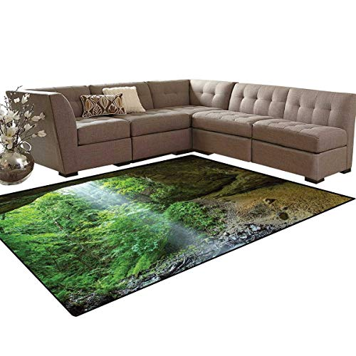 (Nature Bath Mat 3D Digital Printing Mat Canyon Michigan Caves Memorial Falls in The Forest Eco Foliage Picture Extra Large Area Rug 6'6