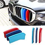 VANJING M-Colored Stripe Grille Insert Trims for 2014-up BMW F15 X5, 2015-up F16 X6 Center Kidney Grill