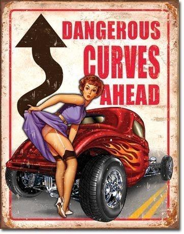 Dangerous Curves Ahead metal sign signs-unique