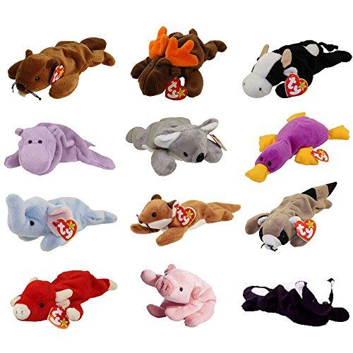 TY Beanie Babies - WILD ANIMALS #1 (Set of 12)(Bucky, Daisy, Happy, Mel, Patti, Sly +6)(8-9.5 inch)